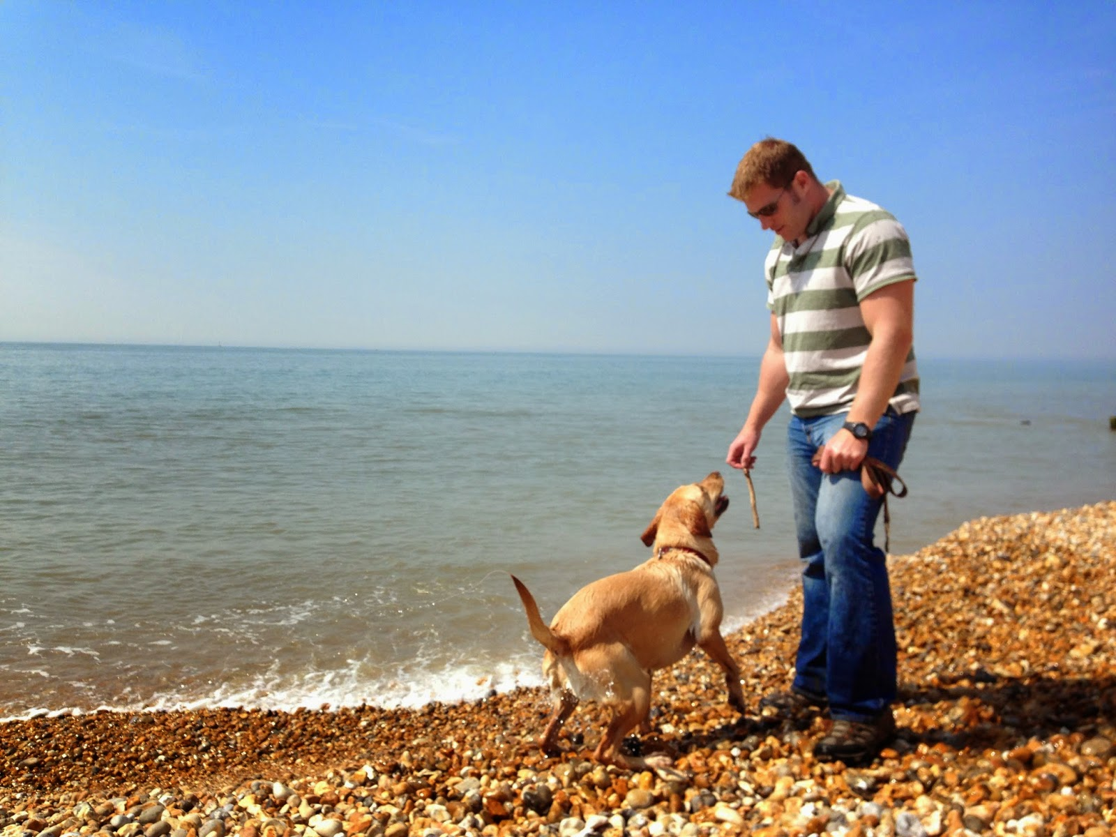 Mr Tin Box gets ready to throw a stick in the sea for Tin Box Dog