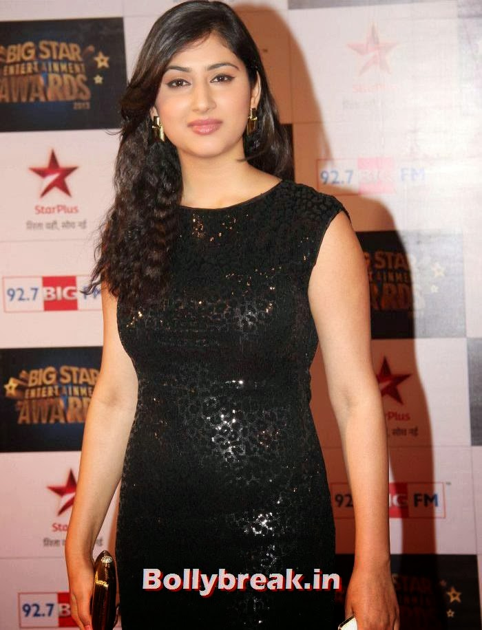Disha Parmar, Tv babes Sizzle on Big Star Entertainment Awards 2013 Red Carpet