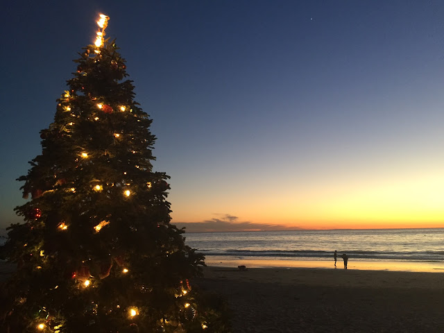 Crystal Cove Christmas Tree