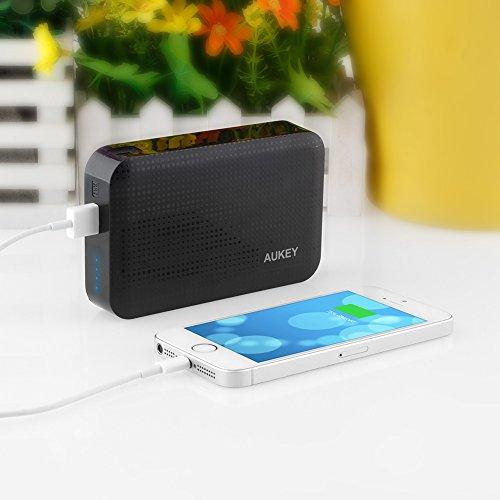 "Caricabatterie portatile per telefoni ""Powerbank"""