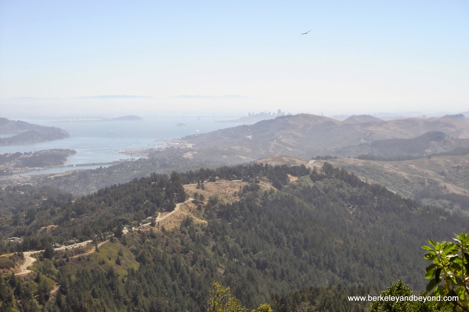 view of San Francisco from Matt Davis Trail in Mill Valley, CA