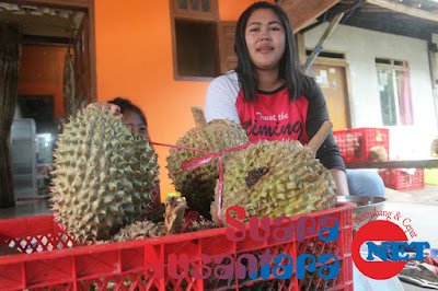 Warga Songgon Keluhkan Maraknya Durian Yang Datang Dari Luar Banyuwangi