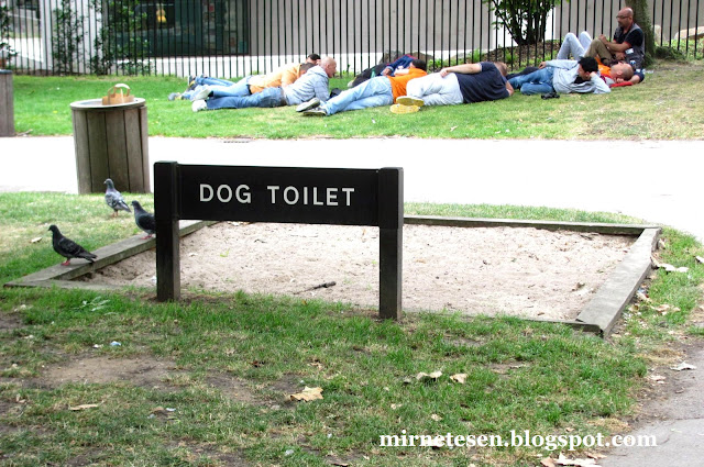 Лондон - Хоулэнд-Парк, туалет для собак