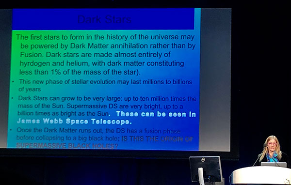 Conjecture about dark matter, dark stars, and maybe even black holes  (Source: Katherine Freese, at April APS Meeting in Denver)