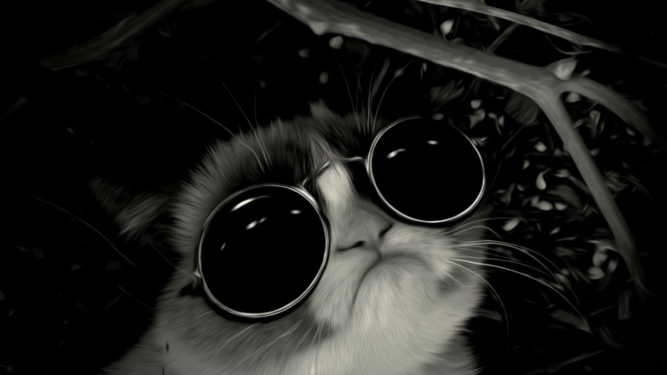 Cool cat tumblr wallpapers gallery - Cool backgrounds of cats ...