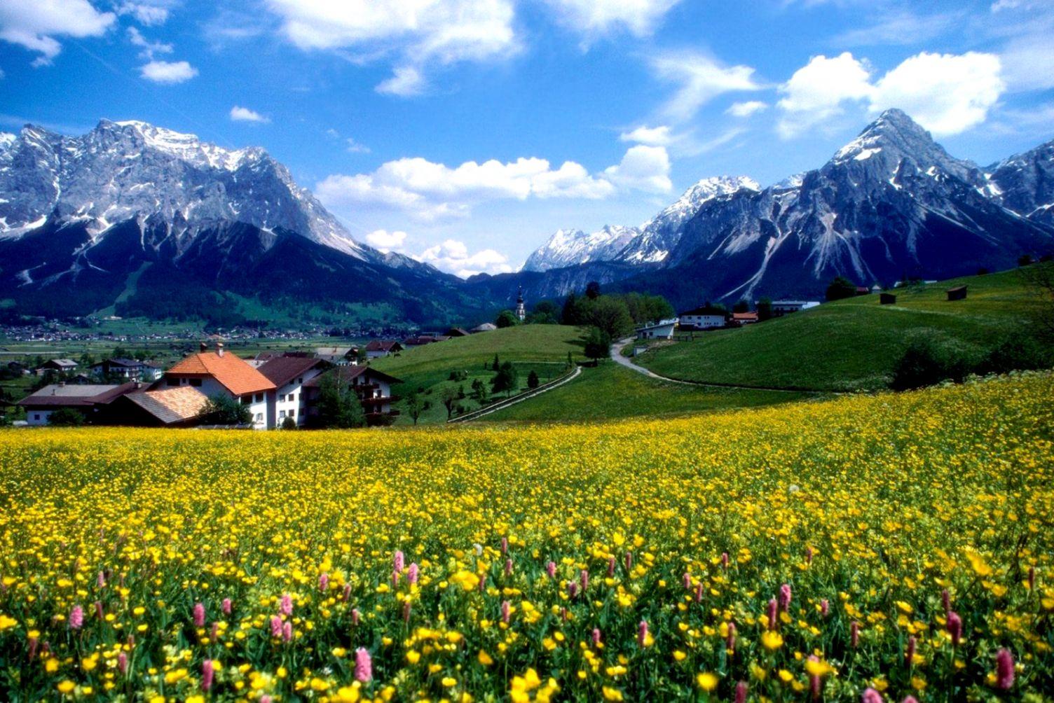 Fields Flowers Field Landscape Mountains Houses Beautiful