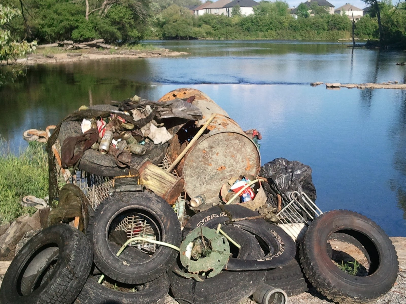 Mississippi River Clean Up In Carleton Place