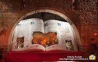 Presepe 2014 a san Pietro di Gemonio