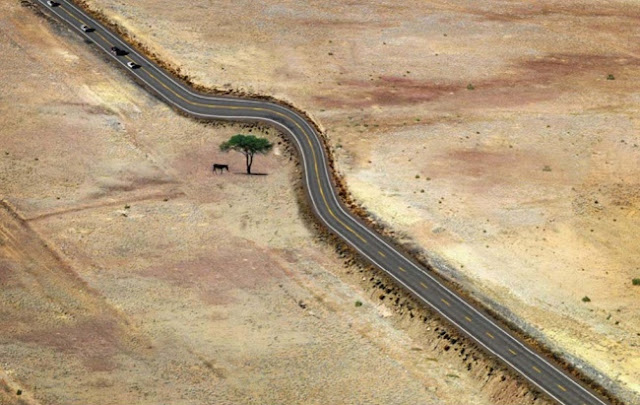 Beberapa Gambar Inspirasional Cara Manusia Menghormati Alam