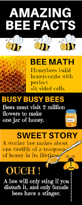 science reading for first graders, all about bees unit study, MrsQuimbyReads, teaching resources