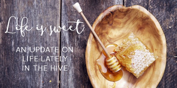Life is sweet. A behind the scenes update on life lately at The Inspired Hive blog.