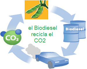 biodiesel recicla CO2