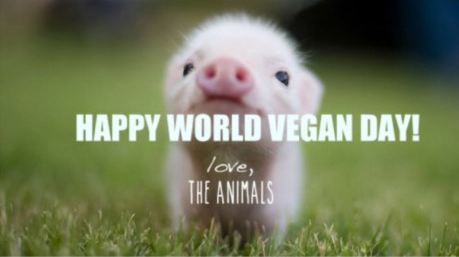 https://www.vegansociety.com/whats-new/events/world-vegan-month-0