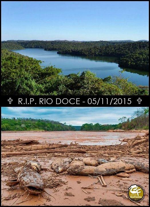 Papo10: [VÍDEO CHOCANTE] Luto: O Rio Doce está oficialmente