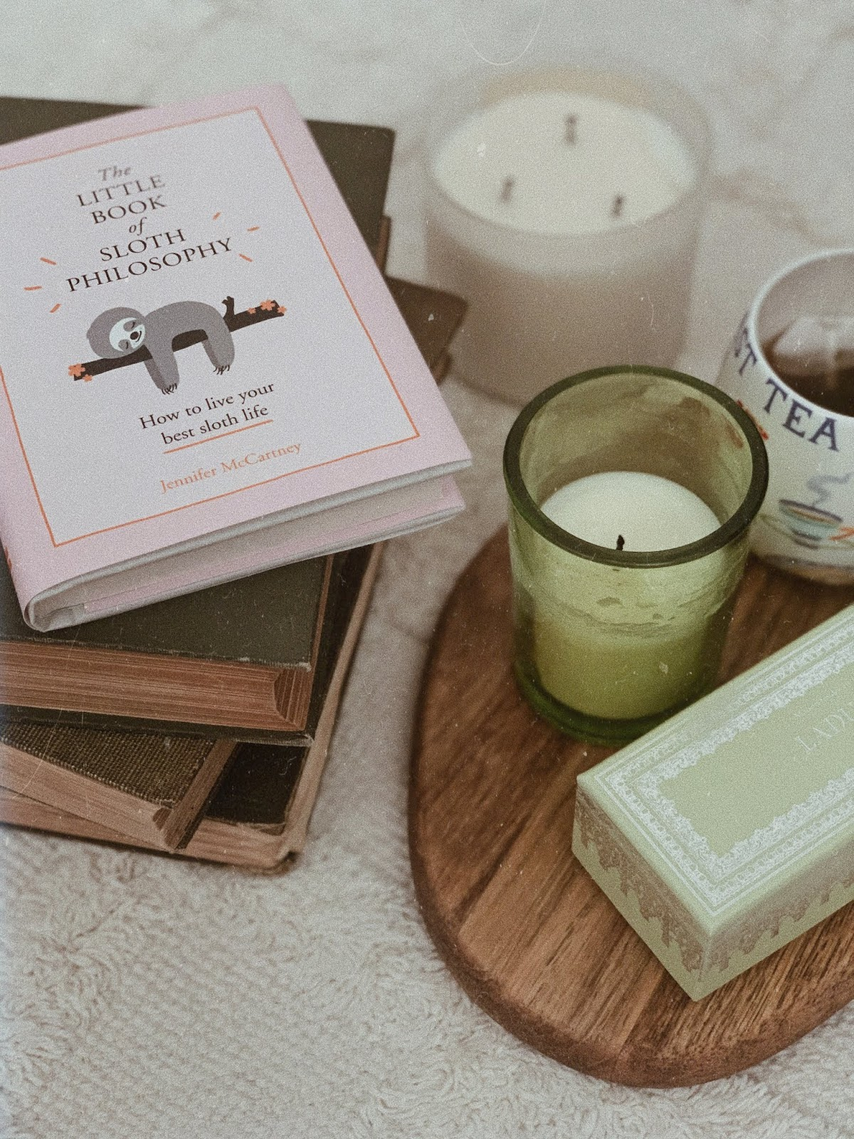 flatlay of the little book of sloth philosophy by jennifer mccartney - book review | book book bitch