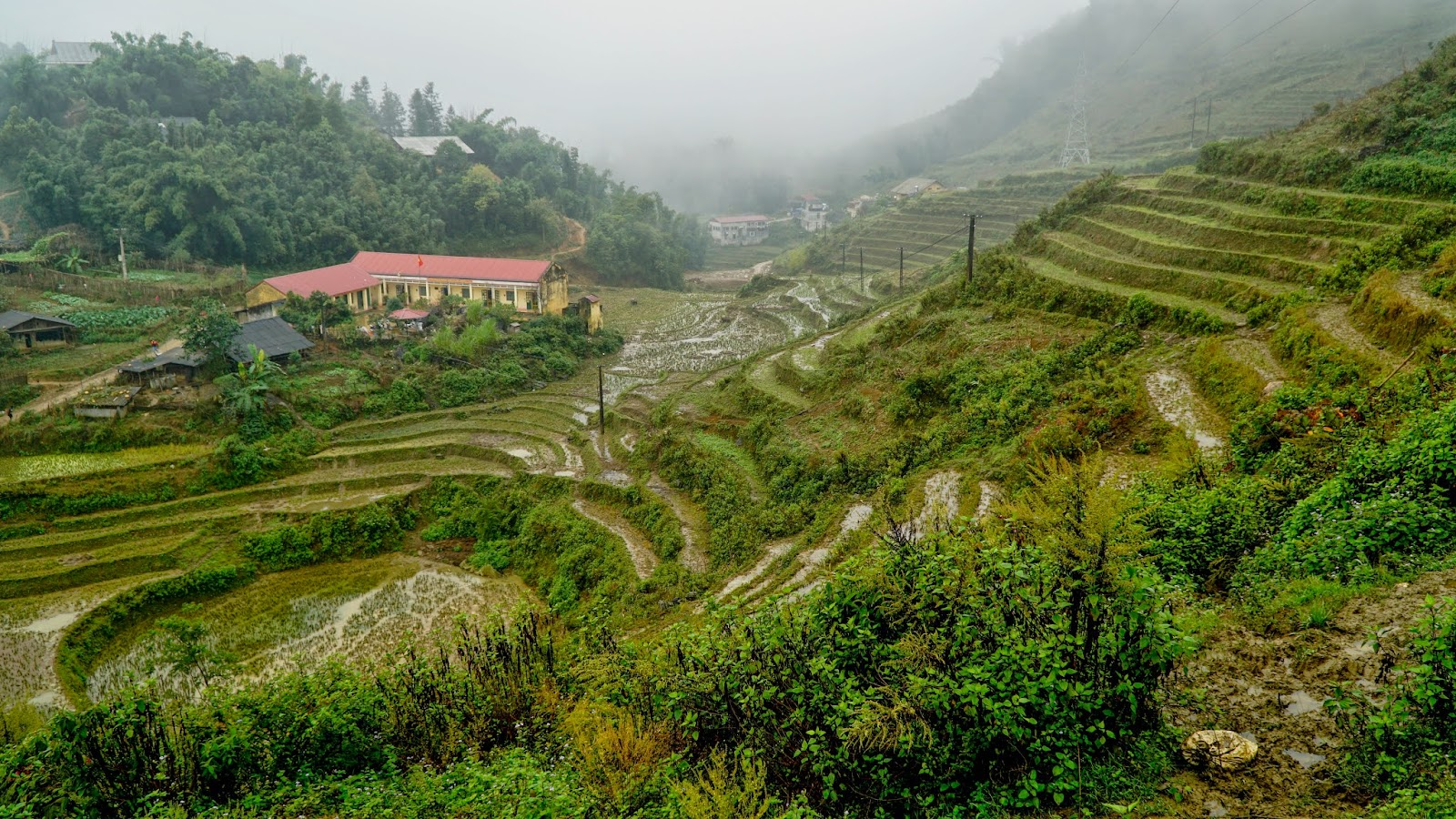 Rice terraces in Cat Cat Village
