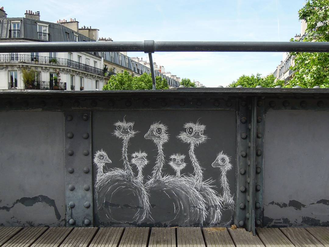 art by Matt-tieu artiste craie graffiti coulée verte paris autruche street art