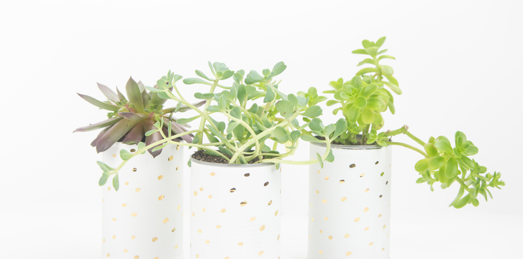DIY Foiled Vinyl Planter for weddings, parties, or home decor. Use this technique to print any design and foil on vinyl for a custom look! by @createoften