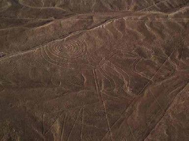 Mono de Nazca