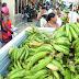 INESPRE inicia venta de plátanos a 2.50 pesos