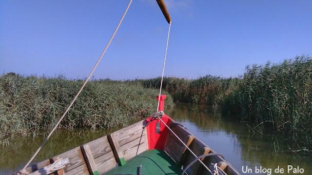 La barca se adentra en los canales de la Albufera