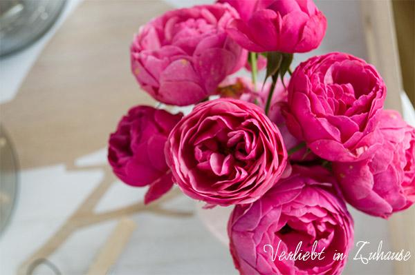 Rosa Rosen zum Friday Flowerday bei Holunderblütchen