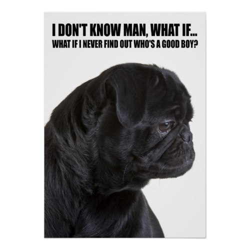 Who's A Good Boy | Funny Pug Poster