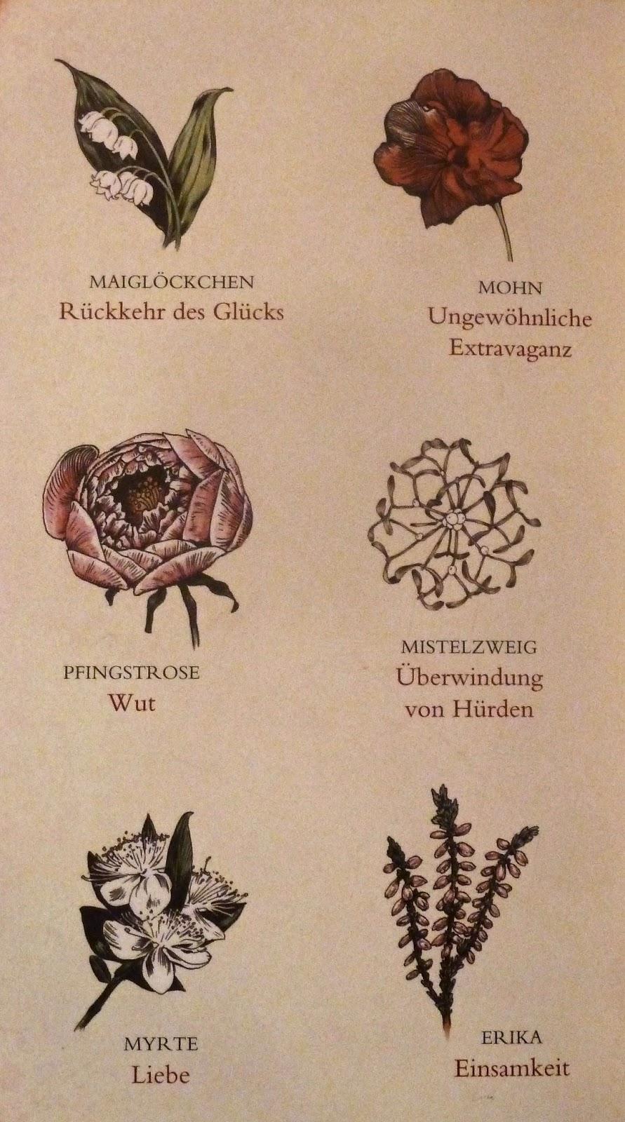 """Buchtipps für Leseratten: """"Die verborgene Sprache der ..."""