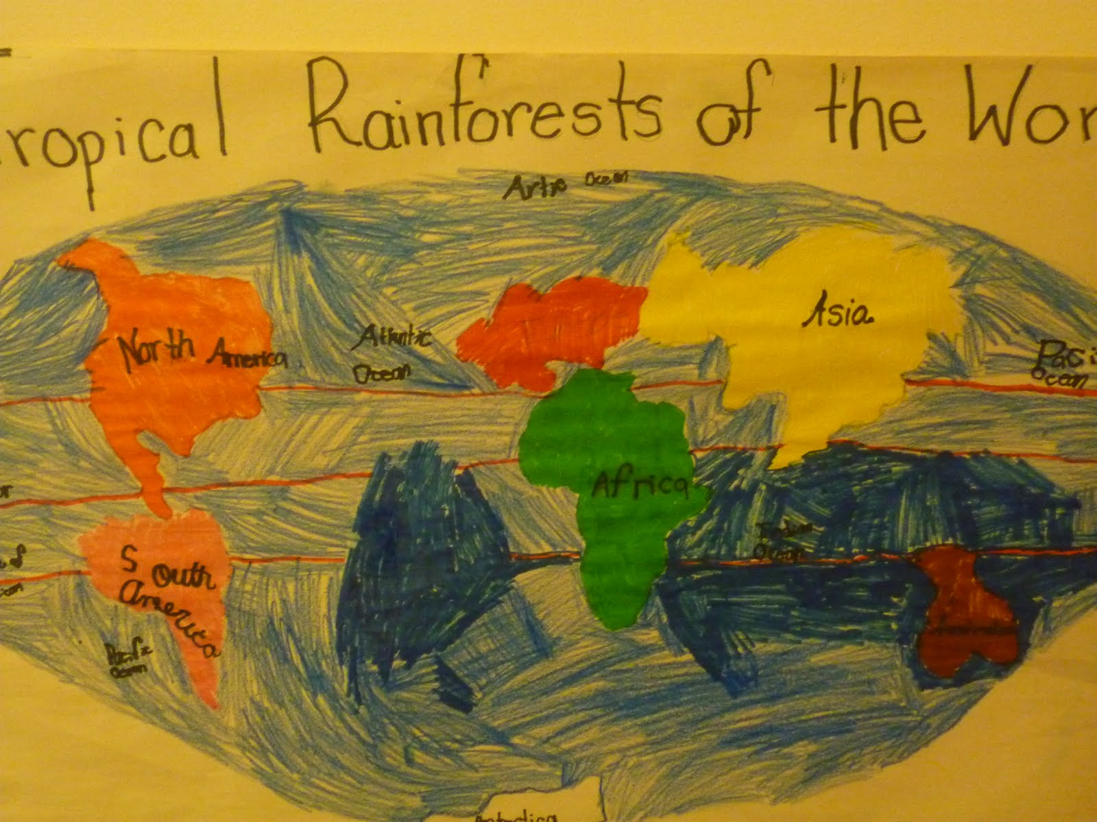 The Work Plan Where Are All The Rainforest