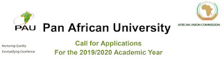Pan African University Scholarships for Africans 2019/2020 | MSc & PhD