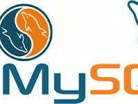 MySQL Error #1055