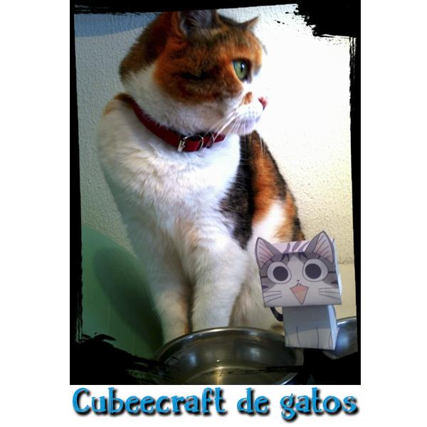 Plantillas de Cubeecraft y Papercraft de gatos para descargar gratis