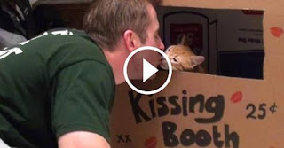 Kitty Kissing Booth!