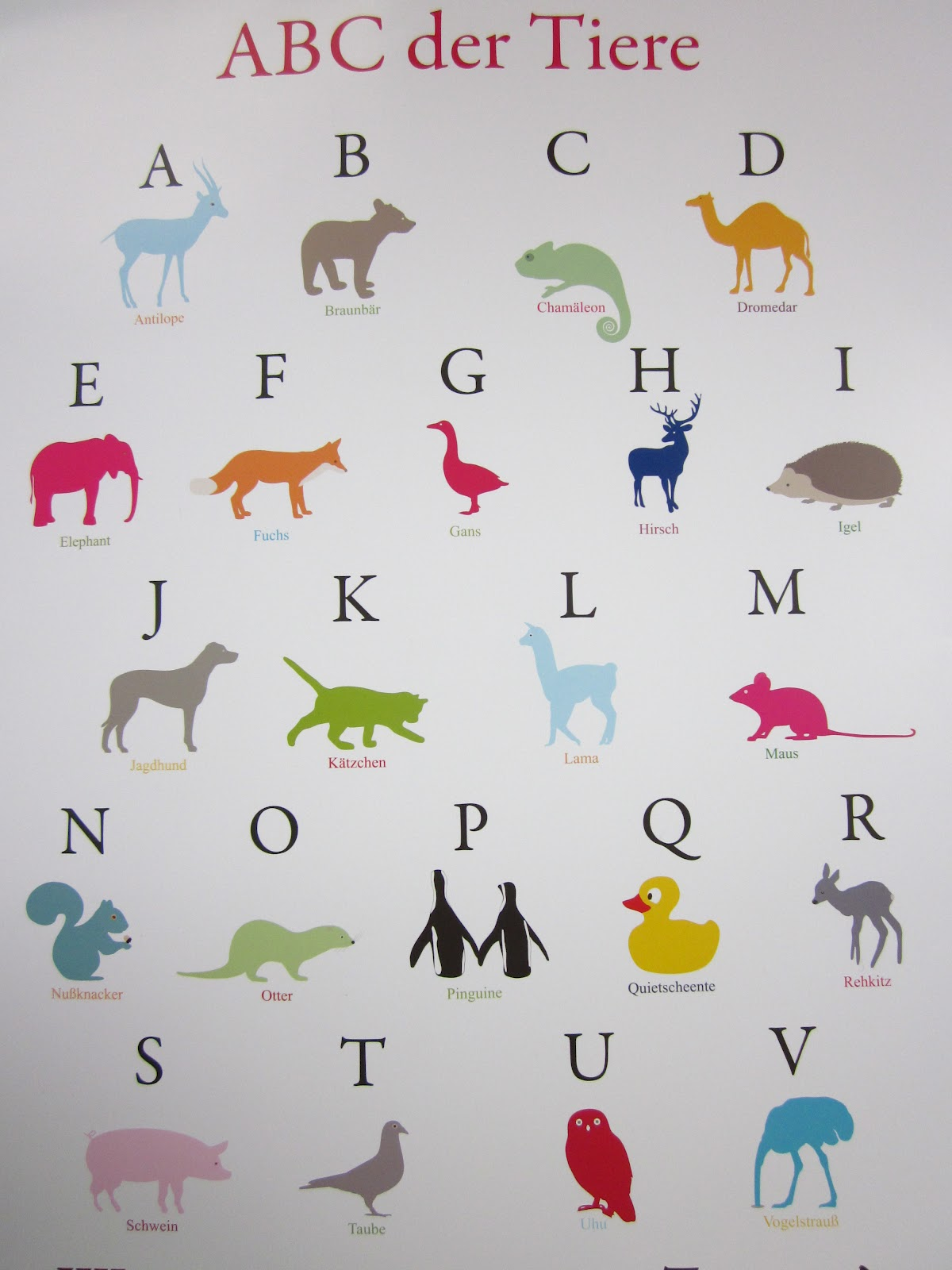 Tiere Mit U