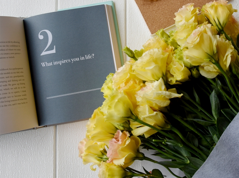 mothers day gifts flower chimp carnation