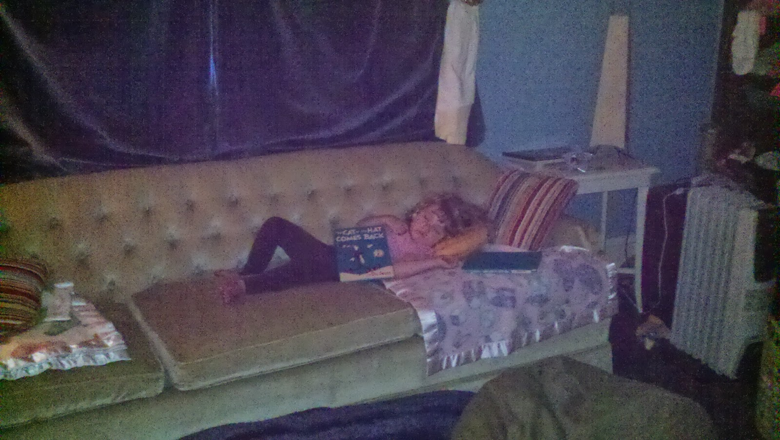 sam and cat sofa bed trick kingpets comfortable dog large sv appa