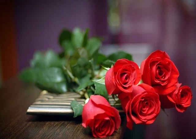 Bó hoa hồng đỏ đẹp nhất thế giới 7