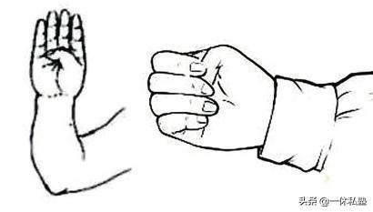 每日握拳,把握自己的健康狀態(握固)