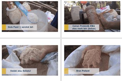 Cara Membuat Pakan Semi Fermented (Organik) untuk Ayam atau Unggas Lainnya Agar Kandang Tidak Bau