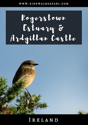 Non-touristy day trip from Dublin: Rogerstown Estuary and Ardgillan Castle