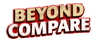 Beyond Compare Windows Logo FileSeries FS