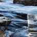 Sectores público, privado y academia buscan soluciones a los problemas del agua