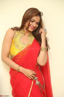 Actress Ashwini in Golden choli Red saree Spicy Pics ~  115.JPG