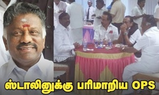 OPS serves food for Stalin!