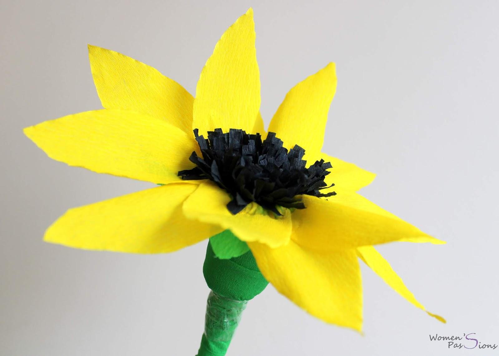 Jak zrobić słonecznik z bibuły?