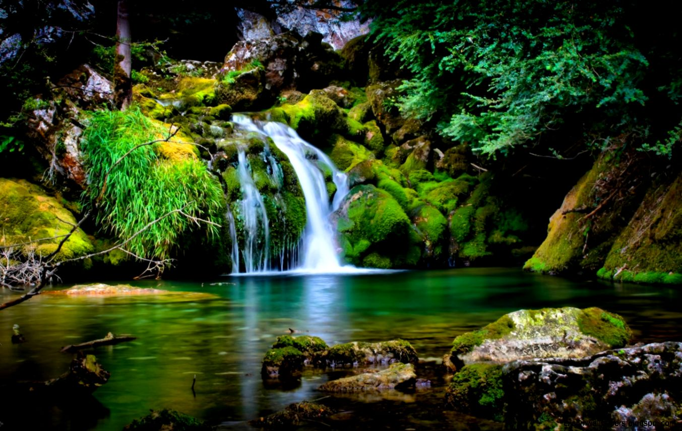Free Download Hd Nature Wallpaper For Windows 7 | Zoom ...