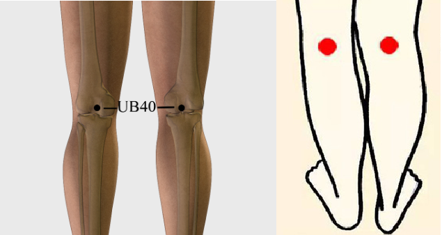 Ub 21 Acupuncture Point