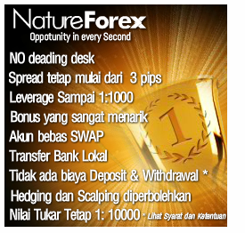 Blessing 3 forex ea