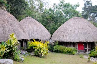 Desain Rumah Adat Papua Terpopuler 2