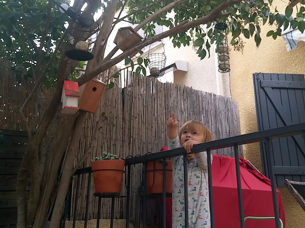 #tuto - Notre hôtel à oiseaux !